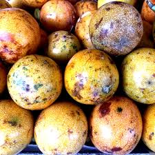 Kernel Toms Pumpkin Patch Moorpark Ca by Purple Passionfruit Information Recipes And Facts