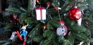 Aspirin Keep Christmas Trees Alive by Christmas Tree Faq Today U0027s Homeowner