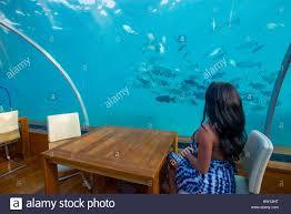 100 Conrad Island Maldives Rangali Hilton Resort Couple At Ithaa