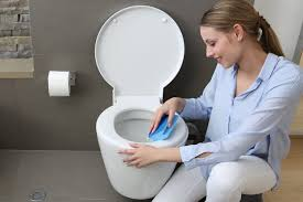 wc frisch was tun wenn die toilette stinkt