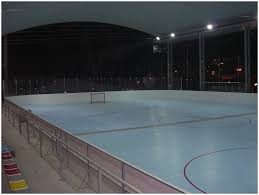 Backyards : Superb Backyard Hockey Rink Basketball Court 97 Roller ...