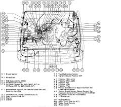 2009 Toyota Tacoma Engine Diagram - Wiring Circuit • Heater Diagram 1992 Toyota Pickup Wiring For Light Switch 1988 Truck Cooling System Trusted 1991 Complete Diagrams 1993 Manual Car Owners 1996 4runner Diy Basic Instruction White98fbird Tacoma Xtra Cabs Photo Gallery At Cardomain Stereo Electrical Work Chevrolet Camaro Fresh Ssr For Sale Arstic Toyota Tacoma Ultimate Cars Dealer 1990 Door Data Is Mini Truckin Dead Image