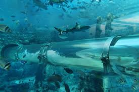 100 Hotel In Dubai On Water Atlantis