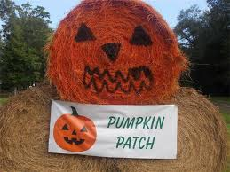 Pumpkin Patches Near Dallas Tx 2015 by B U0026m Farms Pumpkin Patch Texas Haunted Houses