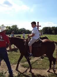 Carolyns Pumpkin Patch Kc by Pony Rides Kansas City Children U0027s Activities Kc Kids Fun
