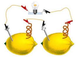lemon battery experiment for study