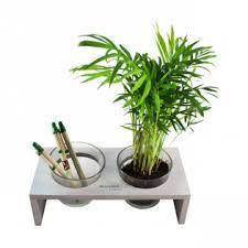 plante d駱olluante bureau plante dans pots en verre et plateau de bureau personnalisé