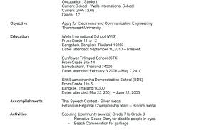 Narrative Resume Template For High School Students Alluring Curriculum Vitae Sample Federal Entry Level Format