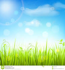 Spring Meadow Grass Blue Sky Poster Stock Vector Image 40679060