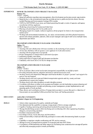 Download Transportation Project Manager Resume Sample As Image File