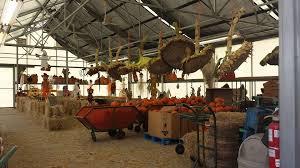 Myers Pumpkin Patch Dalhart Tx by Meyer U0027s Farm Market Milton Wisconsin Facebook