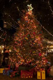 Crab Pot Christmas Trees Morehead City Nc by December 2013 U2013 Homeless And Loving It