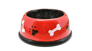 Dog Paw Print Pumpkin Stencils by How To Paint Pottery With Stencils Dog Bowl With Bone And Paw