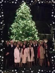 Christmas Tree Cataract Surgery by Visufarma The Eye Health Company Linkedin