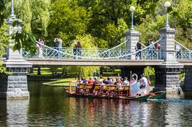 The Swan Boats Are Back For 2017 This Weekend – Boston Magazine Police Florida Man Kicks Swans Sleeping Duck While Practicing Swan Hill Fire Controlled The Guardian Toyota Hilux Animal Ambulance Carries Precious Cargo Uk Creek Landscaping Crew Our Fleet Equipment Pinterest Trumpeter Invade Valley Environmental Jhnewsandguidecom Schwans Company Wikipedia Blackburnnewscom Swans Found Dead At Luther Marsh 311216 Birdlog Frodsham Birdblog Tyreswanorama Car Wrecker Valley Perth Cash For Cars Removal Suburbs Rescue Southport Visiter