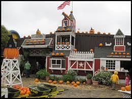 Burts Pumpkin Farm Controversy by 25 Best Big Scary Ideas Images On Pinterest Big Scary Addiction