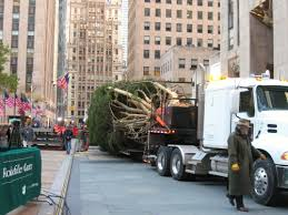 Rockefeller Center Christmas Tree Facts by Center Christmas Tree