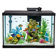 top fin皰 aquarium starter kit fish starter kits petsmart