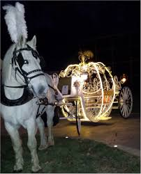 Gold Pumpkin Carriage Centerpiece by Cinderella Pumpkin Carriage All Lit Up Last Night At Crystal Manor