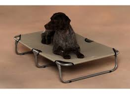 kh pet cot raised mesh cooling dog bed dog beds and costumes