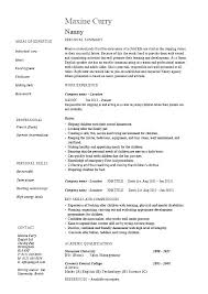 Resume Profile Title Examples With For Resumes Example Elegant Professional
