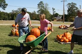 Pumpkin Patch Cyril Oklahoma by 100 Pumpkin Patch Okc Area Popular Pumpkin Patches In