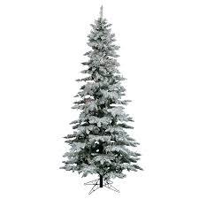 Pre Lit Flocked Christmas Tree Canada by Shop Vickerman 10 Ft Pre Lit Utica Fir Slim Flocked Artificial