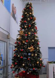 Fibre Optic Christmas Trees Bq by Lighted Christmas Tree Branches Best Images Collections Hd For