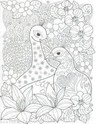 923 Best Birds Coloring Images On Pinterest