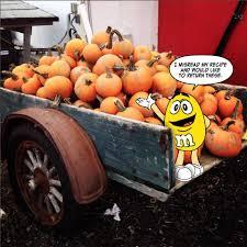 Pumpkin Spice Mms Canada by M U0026m U0027s U S A Home Facebook