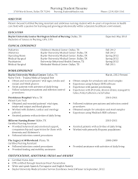 Sample Nursing Student Resume Main Image