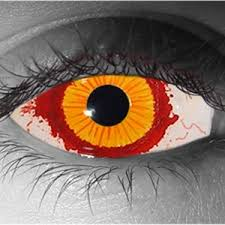 All White Halloween Contacts by Exotic Contact Lenses Contact Lenses Halloween Fx And Beauty Usa
