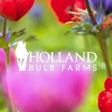 hollandbulbfarms home