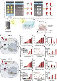 Infrared Lamp Therapy Ppt by Smartphone Controlled Optogenetically Engineered Cells Enable
