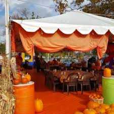 Pumpkin Patch San Jose 2015 by Pick Of The Patch Pumpkins U0026 Abc Tree Farms 31 Photos U0026 16