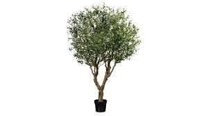 olivenbaum grüner kunststoff schwarzer topf höhe ca 240 cm