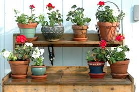 fresh potting bench with wooden top surface under plant pot racks