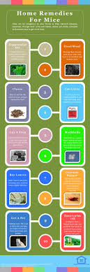 Best 25+ Mice Repellent Ideas On Pinterest   Mice Control, Getting ... Mice How To Identity And Get Rid Of In The Garden Home Rats Guaranteed 4 Easy Steps Youtube Does Peppermint Oil Repel Yes Best 25 Getting Rid Rats Ideas On Pinterest 8 Questions Answers About Deer Hantavirus Mouse Control To Of In The Keep Away From Bird Feeders Walls 2 Quick Ways That Work Get Rid Of Rats Using This 3 Home Methods Naturally Dangers Rat Poison Dr Axe Out Your Without Killing Them
