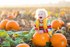 Pumpkin Patch Western Massachusetts by 2017 Indianapolis Pumpkin Patch Guide Indy U0027s Child Parenting