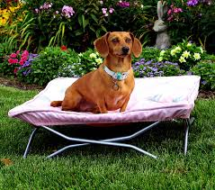 Heated Dog Beds Walmart by Bedroom Fascinating Protect Outdoor Dog Bed Canopy All Walmart