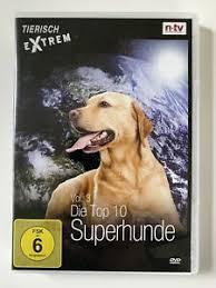 hund dvd in saarland ebay kleinanzeigen