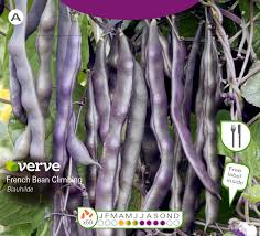 Verve Blauhilde French Bean Seed   Departments   DIY At B&Q Cheap Bean Bag Pillow Small Find Volume 24 Issue 3 Wwwtharvestbeanorg March 2018 Page Red Cout Png Clipart Images Pngfuel Joie Pact Compact Travel Baby Stroller With Carrying Camellia Brand Kidney Beans Dry 1 Pound Bag Soya Beans Stock Photo Image Of Close White Pulses 22568264 Stages Isofix Gemm Bundle Cranberry 50 Pictures Hd Download Authentic Images On Eyeem Lounge In Style These Diy Bags Our Most Popular Thanksgiving Recipe For 2 Years Running Opal Accent Chair Cranberry Products Barrel Chair Sustainability Film Shell Global