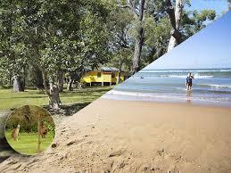 100 Agnes Water Bush Retreat 4bedroom 4acres Australian Bushbeach Paradise RV And Pets Welcome