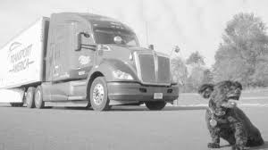 Dog Policy - Transport America Savannah Container Trucking Containerport Group Inc Hart County Chamber Truckingmotorfreight Beckort Auctions Llc Paul Jackson Truck Auction 2 Truck Trailer Transport Express Freight Logistic Diesel Mack Transamerica Parts Best Image Kusaboshicom 1940s Hendrickson In 1948 Chicago Safeway Lines 8x10 Bw Transam Eertainment Xpo Logistics Sells Truckload Shipping Business To Transforce For Classic Metal Works N 1954 Flatbed Red Green 22150365 Dog Policy America Mwi31170 Ho 1960 Ford Tractor Covered Trailer The Worlds Most Recently Posted Photos Of Tour And Transam Flickr