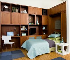 Valet Custom Cabinets Campbell by Latest Buzz The Space Saving Sleek Wall Bed Phoenix Classy