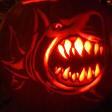 Easy Shark Pumpkin Carving by Mist Shows His Sharkoween Spirit With A Carved Sharks Pumpkin
