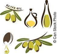 olive oil vector olive oil vector Green Olive tree vector For labels