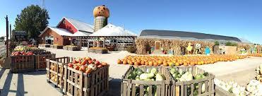 Pumpkin Farm Illinois Giraffe by Fall Fun At Goebbert U0027s Pumpkin Farm U0026 Garden Center South