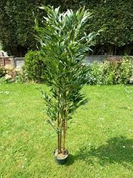 planting bamboo in a pot artificial plants large 5ft bamboo artificial tree 1 5m 150cm