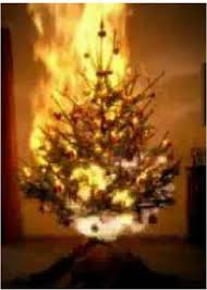 Homemade Christmas Tree Preservative by Amazon Com Stop It Fire Retardant Spray And Christmas Tree Fire
